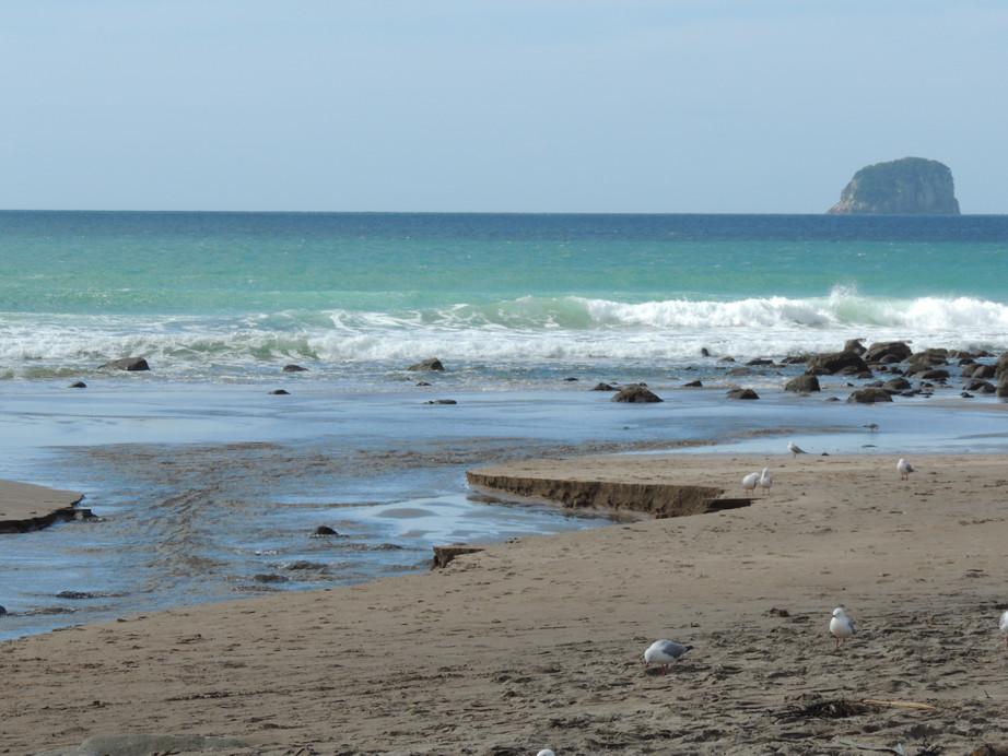 vue hot water beach