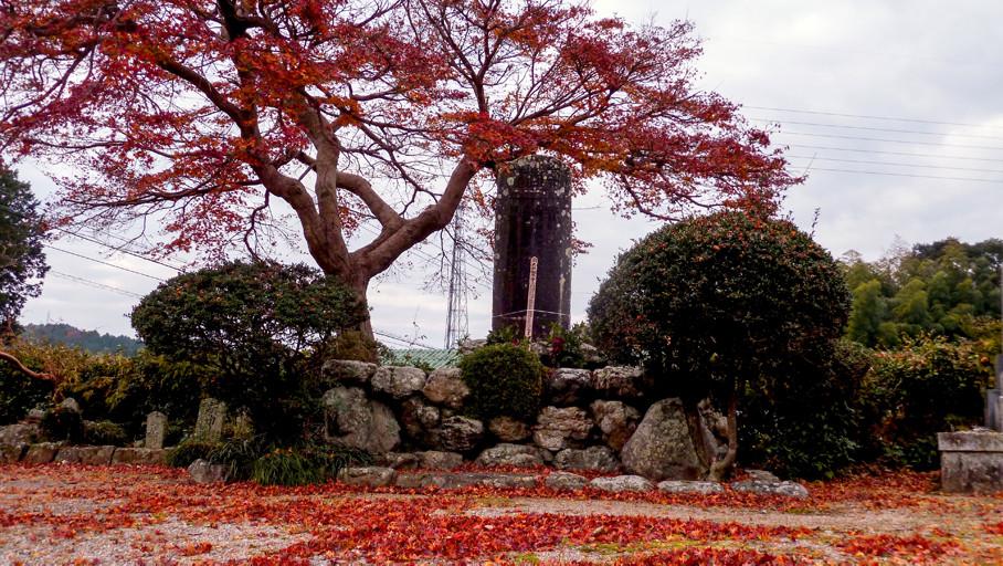 tombe d'automne